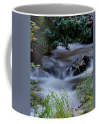 Fluid Beauty Coffee Mug