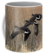 Fluid Migration Coffee Mug