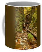 Flume Gorge At Franconia Notch Coffee Mug