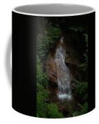 Flume Gorge Coffee Mug
