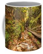 Flume Gorge Landscape Coffee Mug