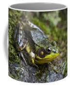 Fly Catcher Coffee Mug by Christina Rollo