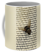 Fly From The Series The Imprint Of Man In Nature Coffee Mug
