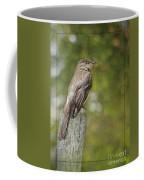 Flycatcher In Southern Missouri Coffee Mug