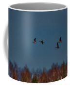 Flyers -leif Sohlman Coffee Mug