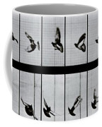 Flying Bird Coffee Mug by Eadweard Muybridge
