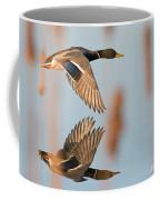 Skimming The Pond Through Cattails Coffee Mug