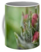 Fog Nourished Coffee Mug