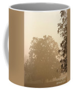 Fog Over Countryside Coffee Mug by Olivier Le Queinec