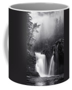 Foggy Falls Coffee Mug