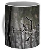 Foggy Morning Pondscape Coffee Mug