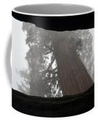 Foggy Morning Sequoias Coffee Mug
