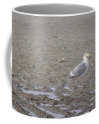 Foggy Seabird Seagulls Brunch Coffee Mug