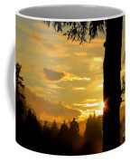 Backyard Sunset Coffee Mug