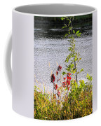 Foliage Along Iowa River Iowa City Ia Coffee Mug