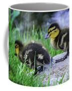 Follow The Leader Ducky Style Coffee Mug