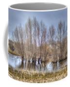 Folsom Dried Pond  Coffee Mug