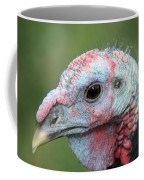Fontana Turkey Portrait Coffee Mug