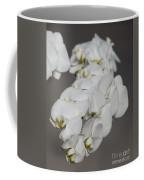 For My Family Coffee Mug
