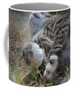 For The Love Of Stretching Coffee Mug by Marilyn Wilson