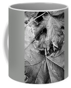 Foraged Insights Coffee Mug