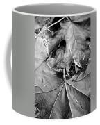 Foraged Insights Coffee Mug