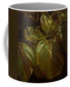 Forbidden Fruits Coffee Mug