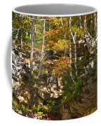 Forest Above The Cave Coffee Mug