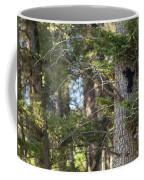 Forest Black Bear Cub Coffee Mug