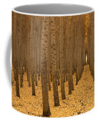 Forest Cathedral - One Coffee Mug