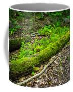Forest Floor Gosnell Big Woods Coffee Mug