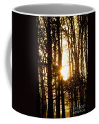 Forest Flurry Lightscape  Coffee Mug