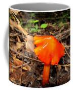 Forest Fungi Flare Coffee Mug
