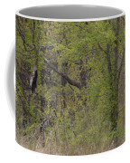 Forest Glimpse Coffee Mug