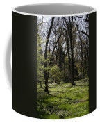 Forest In Spring Coffee Mug