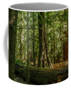 Forest Of Cathedral Grove Collection 1 Coffee Mug