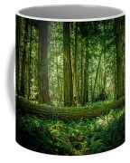 Forest Of Cathedral Grove Collection 7 Coffee Mug