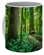 Forest Of Cathedral Grove Collection 8 Coffee Mug
