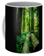 Forest Of Cathedral Grove Collection 9 Coffee Mug