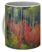 Forest Of Color Coffee Mug