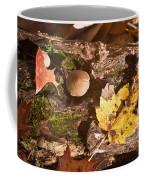 Forest Scene 6 Coffee Mug
