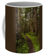 Forest Serenity Path Coffee Mug by Mike Reid