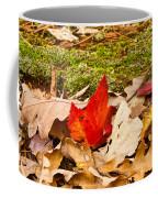 Forest Still Life 5 Coffee Mug