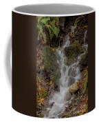 Forest Stream Cascade Coffee Mug