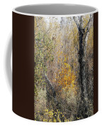 Forest Trees In Winter  Coffee Mug