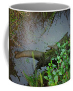 Forest Wetlands I Coffee Mug