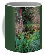 Forest Wetlands II Coffee Mug