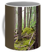 Forest With Moss-covered Rocks Along John's Lake Trail In Glacier Np-mt Coffee Mug