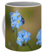 Forget Me Not 01 - S01r Coffee Mug