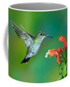 Fork-tailed Woodnymph Coffee Mug